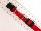 Red Nylon Dog Collar