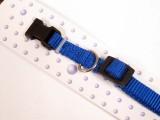 Royal Blue Nylon Dog Collar