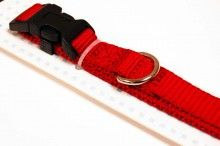 Nylon dog collar medium red