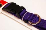 nylon dog collar large purple
