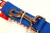 nylon dog leash royal large
