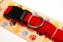 Organic cotton dog collar