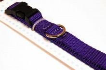 nylon dog collar medium purple