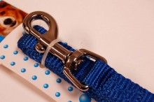 nylon dog leash royal blue medium
