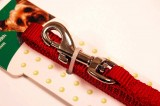 nylon dog leash red small
