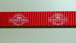 red leash with printed design